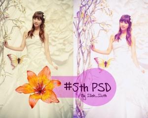 5th PSD
