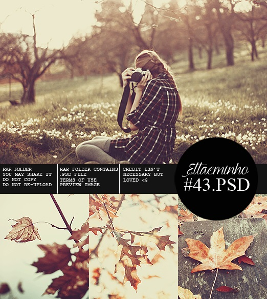 Preview 43